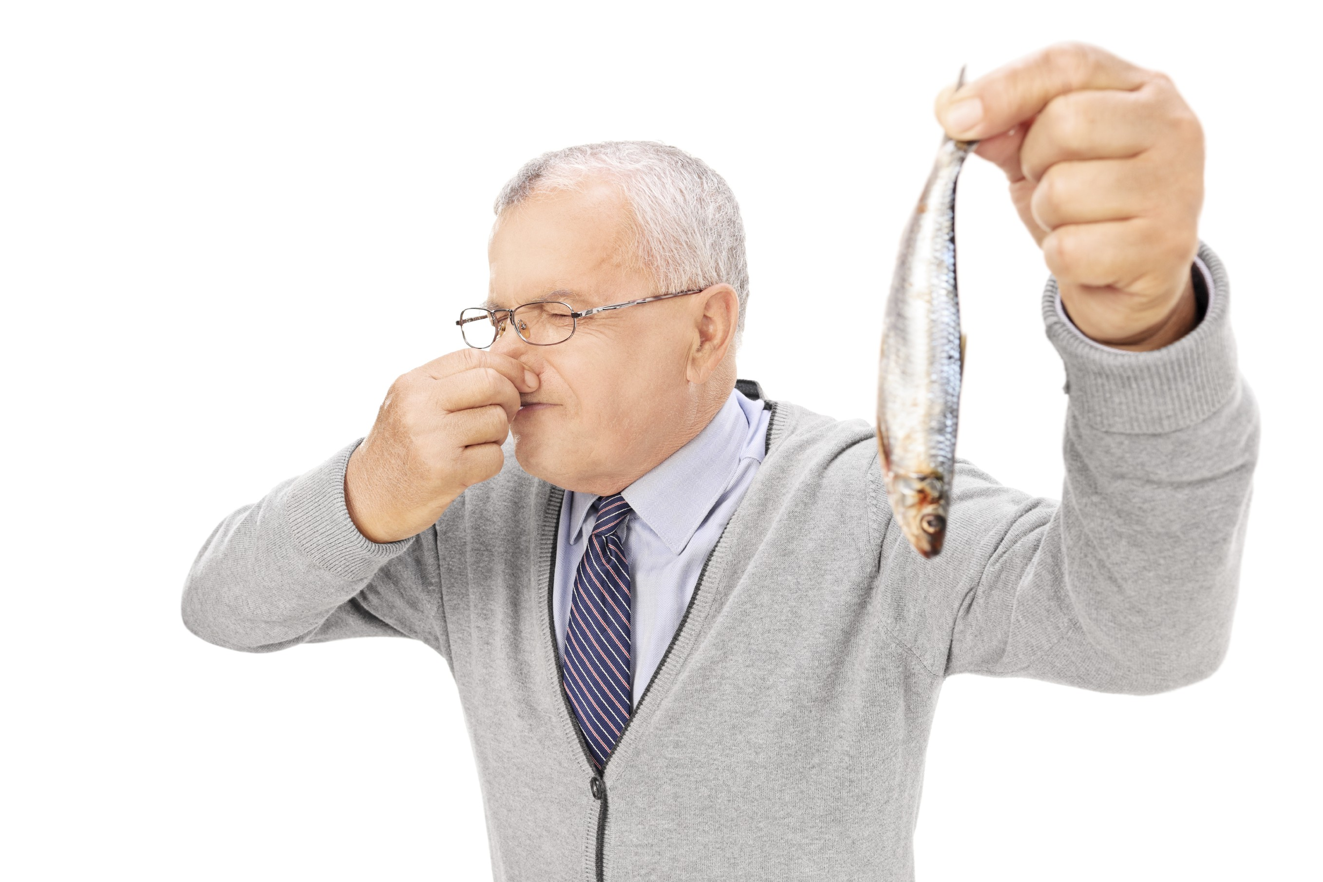 Directory wp content uploads 2014 10 for Stinky fish in a can